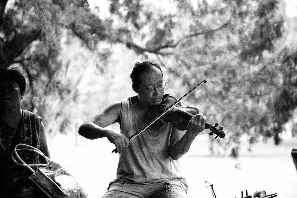 17-joueur-de-violon-parc-des-moussons.jpg